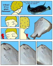 Stingray Meme - steve irwin s stingray death image gallery know your meme
