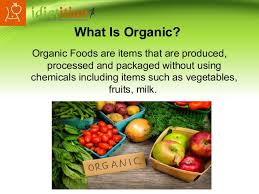 100 non processed foods diet plans organic food diet plan