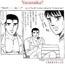 Gay Porn Memes - bara meaning in japanese 薔薇 japanese hobby