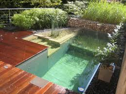 choose a natural swimming pool or pond all plants and no chemicals