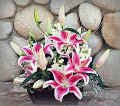 san diego florist 95 best blooming designs san diego florist images on