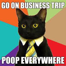Trip Meme - go on business trip cat meme cat planet cat planet