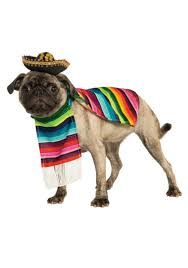 Dog Minion Halloween Costumes Mexican Serape Pet Costume