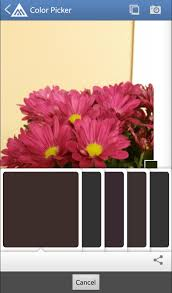 paint color picker app ideas color paint zoom android apps on