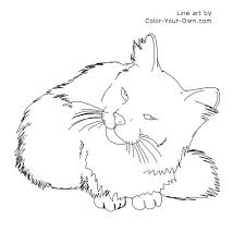 tabby cat coloring pages droll cat coloring page