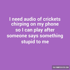 Crickets Chirping Meme - i need audio of crickets chirping on my phone so i funny status
