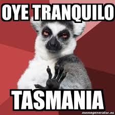 Tasmania Memes - meme chill out lemur oye tranquilo tasmania 17722072