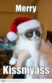Grumpy Cat Meme Happy - top 35 grumpy cat memes cutest cats
