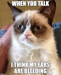 My Ears Are Bleeding Meme - grumpy cat meme imgflip