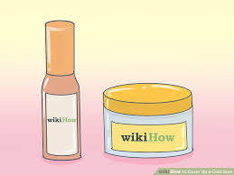 how to cover up a cold sore 12 steps with pictures wikihow