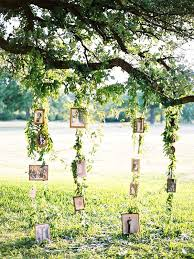 tree decor wedding creative photo display ideas tulle family