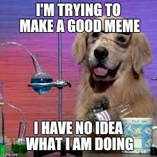 I Have No Idea What Im Doing Meme - i have no idea what i am doing dog memes imgflip