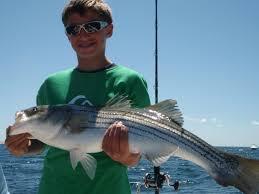 massachusetts fishing cape cod fishing charters