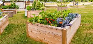 Raised Planter Beds by Raised Bed Gardening Tlc Garden Centers