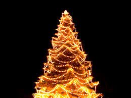 where to buy christmas tree lights christmas tree lighting ideas beautiful outdoor christmas tree