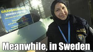 Sweden Meme - meanwhile in sweden memes