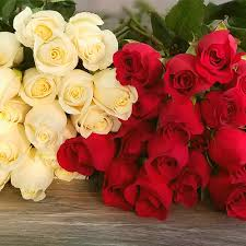 best flower delivery same day flower delivery in miami roses flower shop