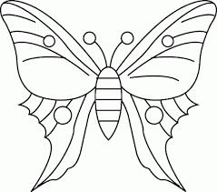 imagenes de mariposas faciles para dibujar tipos de mariposas dibujos buscar con google hijos decoraciones