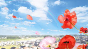 wallpapers tagged with dreamy page 3 blossoming flowers dreamy