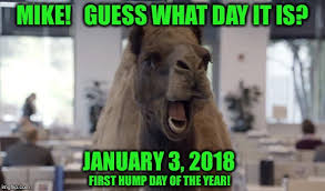 Hump Day Camel Meme - hump day camel memes imgflip