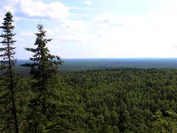 Minnesota forest images File gfp minnesota superior national forest mountain view jpg jpg