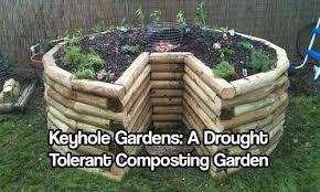 keyhole gardens a drought tolerant composting garden drought