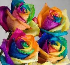 Colored Roses Online Cheap Creative Rainbow Rose Seeds Multi Colored Petal New