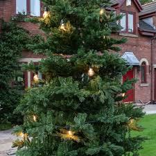 outdoor green richmond fir artificial real feel pe tree