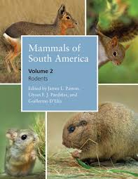 mammals of south america volume 2 rodents james l patton