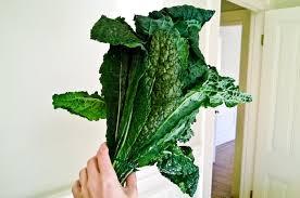 comment cuisiner le chou kale recettes de kale 50 idées pour utiliser le kale chocolate zucchini
