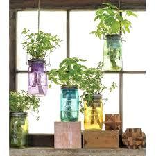 indoors garden garden indoors indoor plant ideas indoor garden london ont