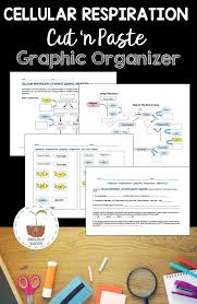 317 best microbiology images on pinterest ap biology cell