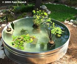 made fish pond filter how to make a container pond in a stock