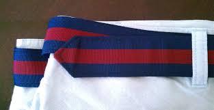 preppy ribbon belts grosgrain ribbon belt thrift store preppy