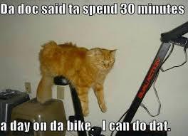 Exercise Meme - the 25 best exercise meme ideas on pinterest funny diet what