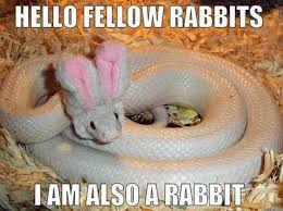 Easter Meme Funny - funny easter memes that will make your holiday 52 pics 21 http