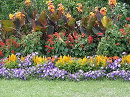 how to start your own flower garden