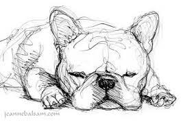portfolio critique french bulldog sketches still a dreamer