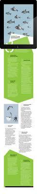 layout magazine app 52 best ipad magazines images on pinterest editorial design
