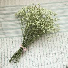 Wholesale Flowers Near Me Natural Dried Flowers Picture More Detailed Picture About