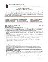Back Office Executive Resume Sample by C Level Executive Resume Resume For Your Job Application