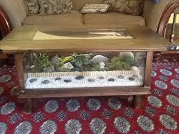 furniture best terrarium coffee table wall picture 4 terrarium