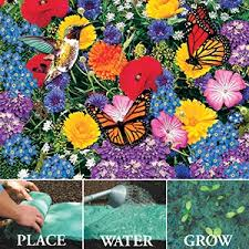 roll out flower garden 19 best flowers that attract humming birds and butterflies images