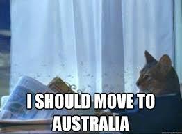 I Should Buy A Boat Meme - i should move to australia i should buy a boat cat quickmeme