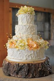 Messy Buttercream Wedding Cake With Color Painted On To The