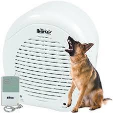 Amazon Electronic Barking Secure Watch Dog Camera &
