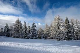 unspoiled alpine winter landscape nature nio