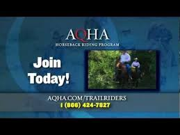 48 best aqha membership images on american quarter