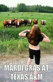 Funny Texas Memes - wild n the country boati gras pinterest texas mardi gras and