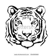 tiger face stock images royalty free images u0026 vectors shutterstock